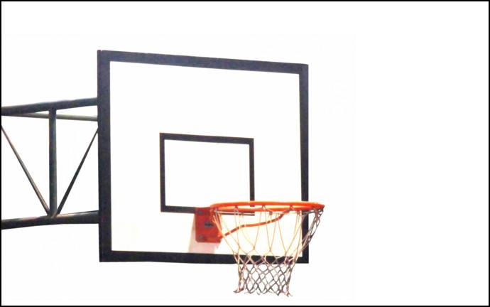 バスケ好き の タマラナイ 家
